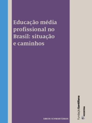 Educação média profissional no Brasil: situação e caminhos